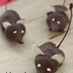Maraschino-cherry-Mice-frugal-coupon-living