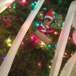 elf-on-the-shelf-ideas-toilet-paper-tree
