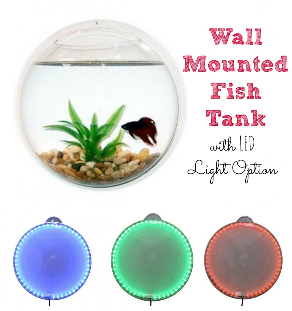 wall-mounted-fish-tank