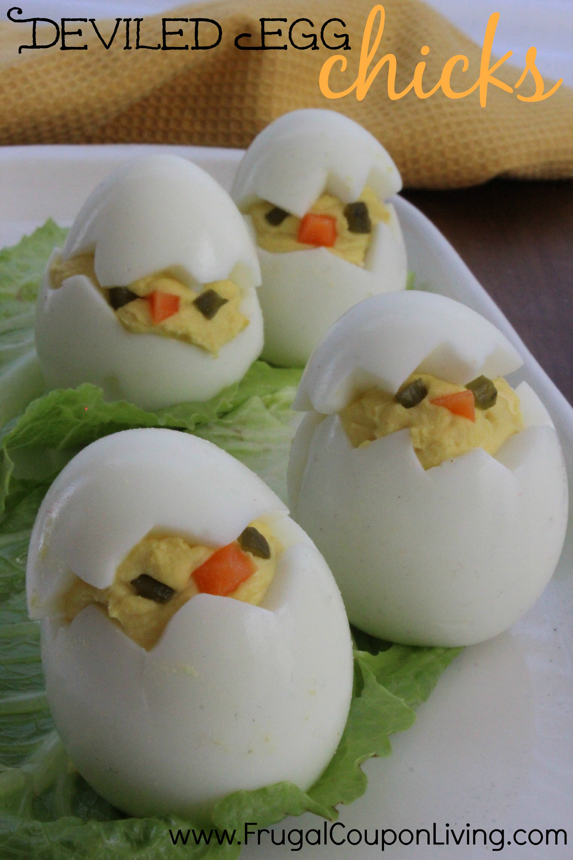 delived-egg-chicks-frugal-coupon-living