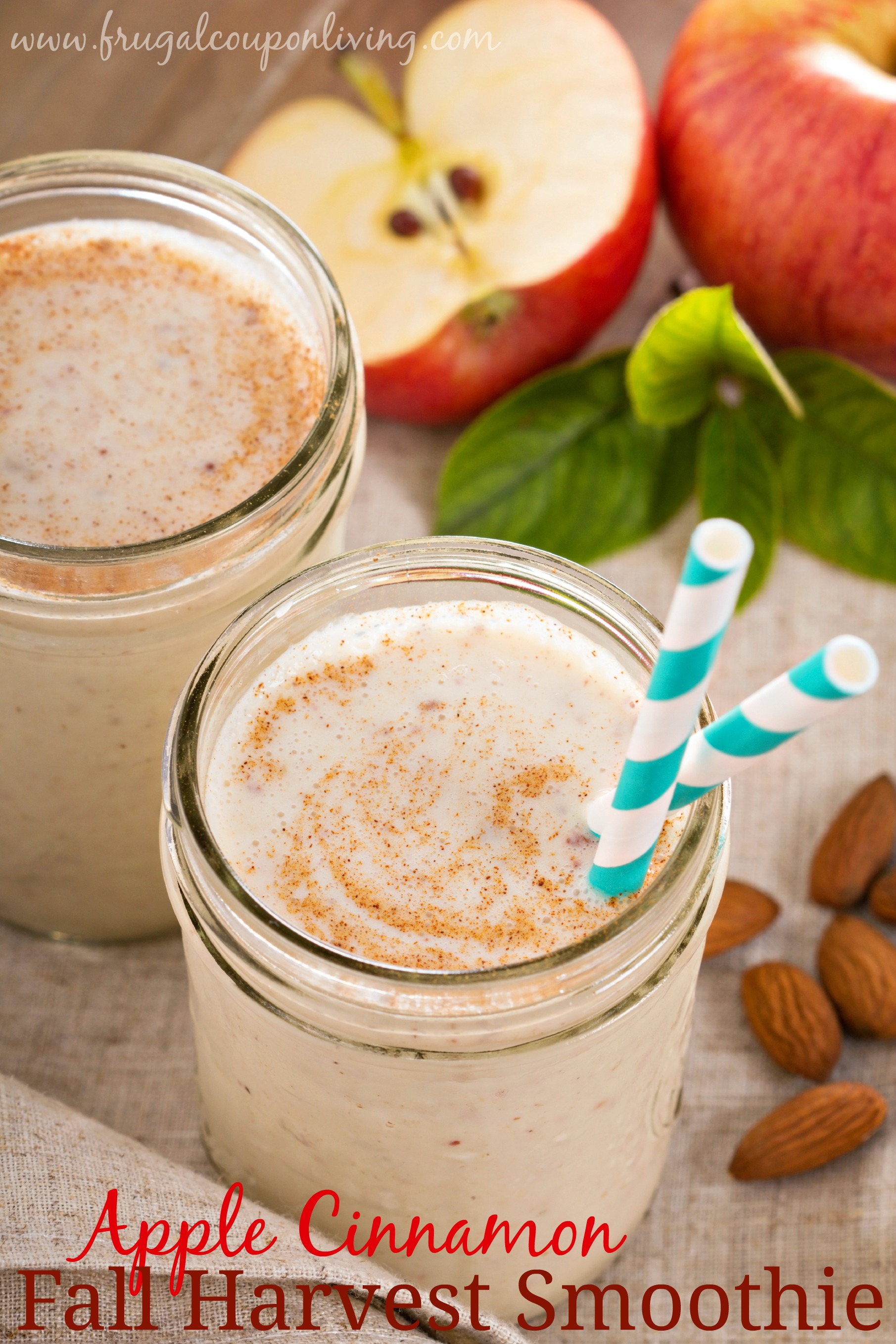 Healthy Apple Cinnamon Smoothie
