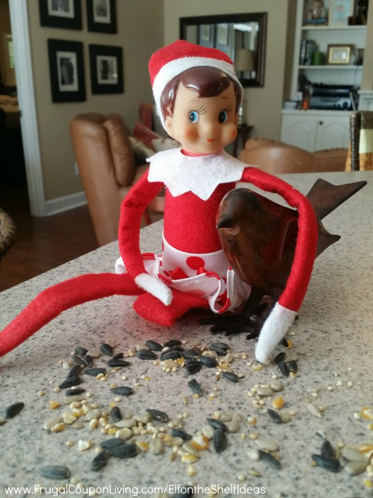Elf-On-The-Shelf-Ideas-Frugal-Coupon-LIving-Birds