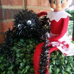 Elf-On-The-Shelf-Ideas-Frugal-Coupon-LIving-spider-web