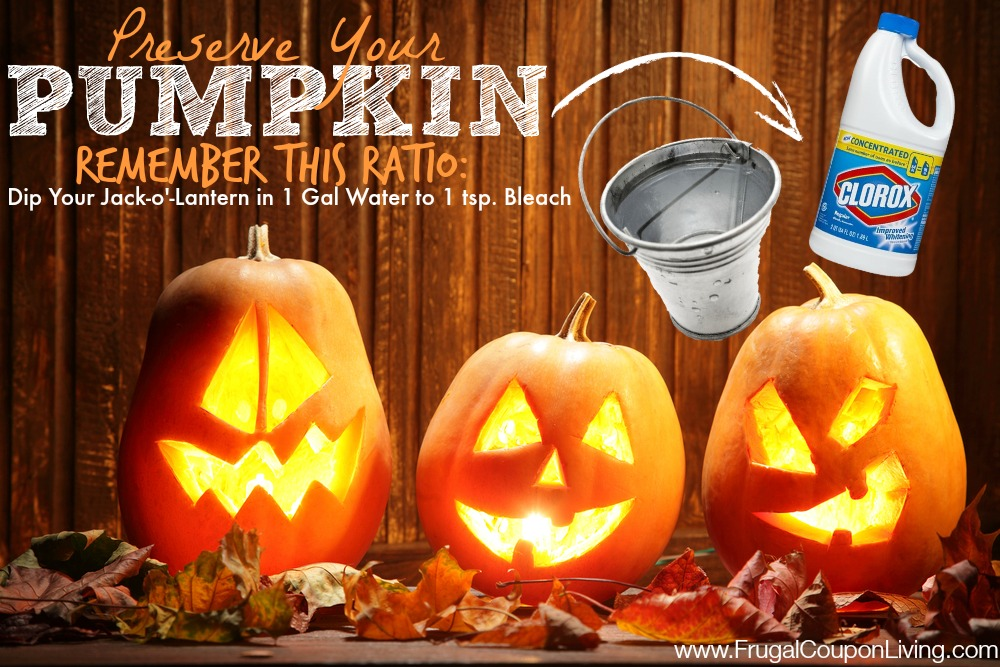 Pumpkin carving tip help your jack o lantern last longer