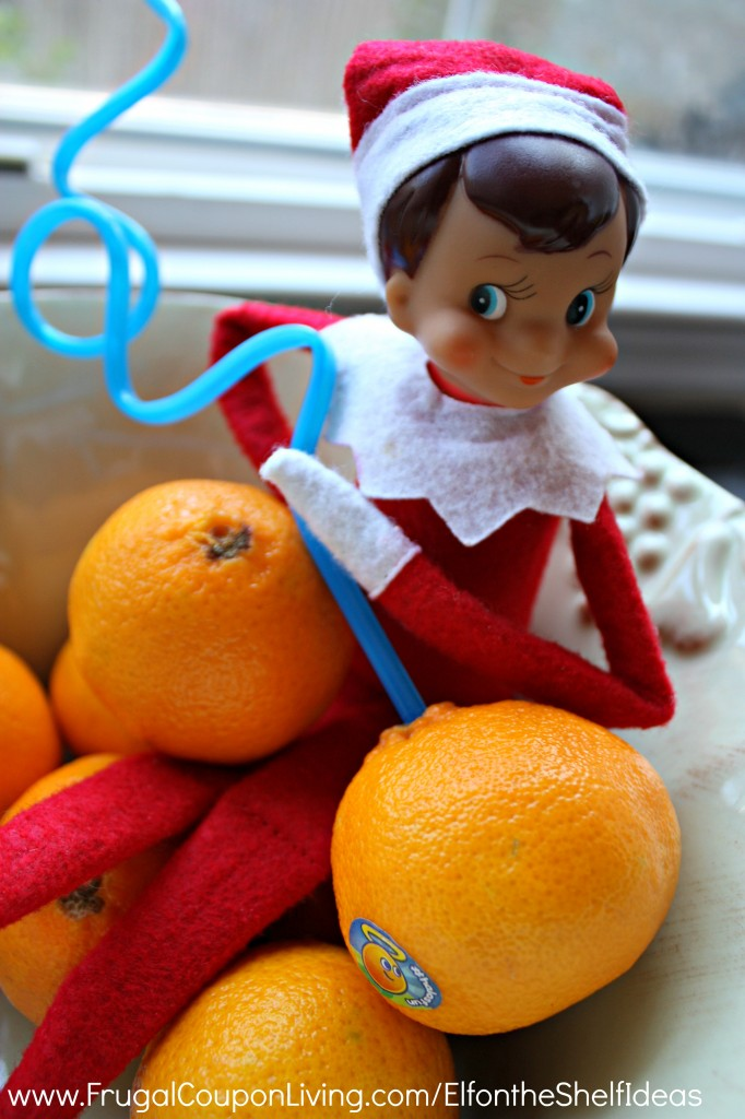 Elf-Drinks-Oranges-Elf-on-the-shelf-ideas-frugal-coupon-living