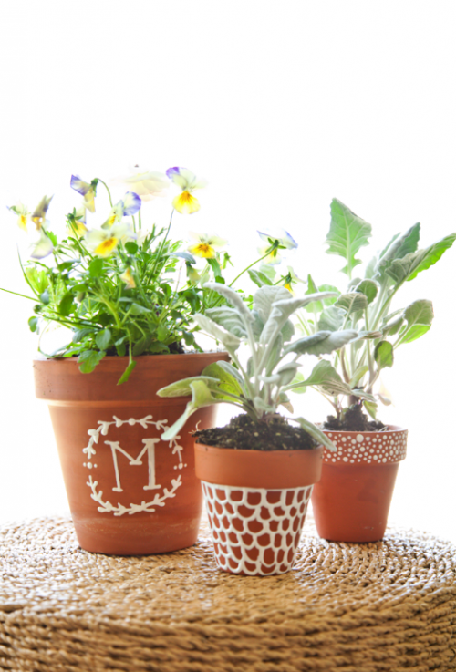 boxwood-clippings_monogramn-plant-pots