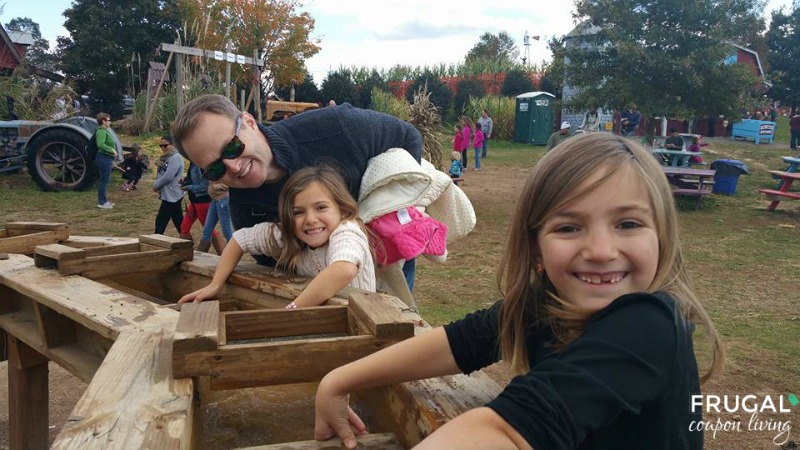 Cox Farm Fall Festival Gem Mining