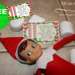 Elf-Marshmallows-Kitchen-Floor-frugal-coupon-living-elf-on-the-shelf-ideas