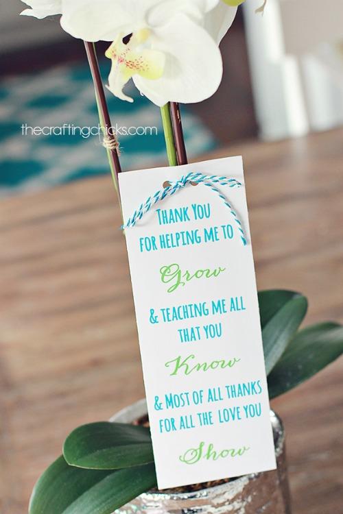 sm-teacher-plant-gift-500