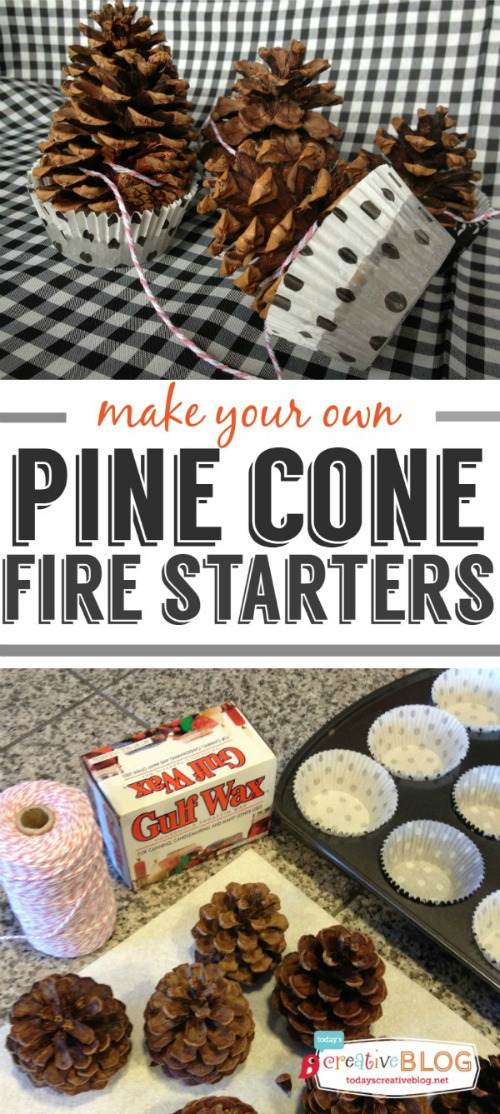 Pine-cone-fire-starter