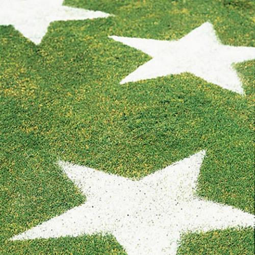 stars-lawn