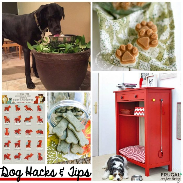 Dog-hacks-tips-frugal-coupon-living-collage-fb
