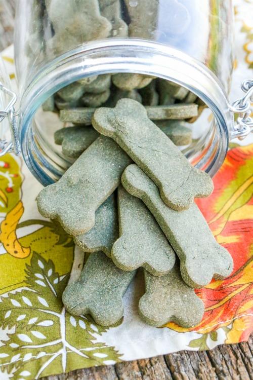 homemade-greenies-parsley