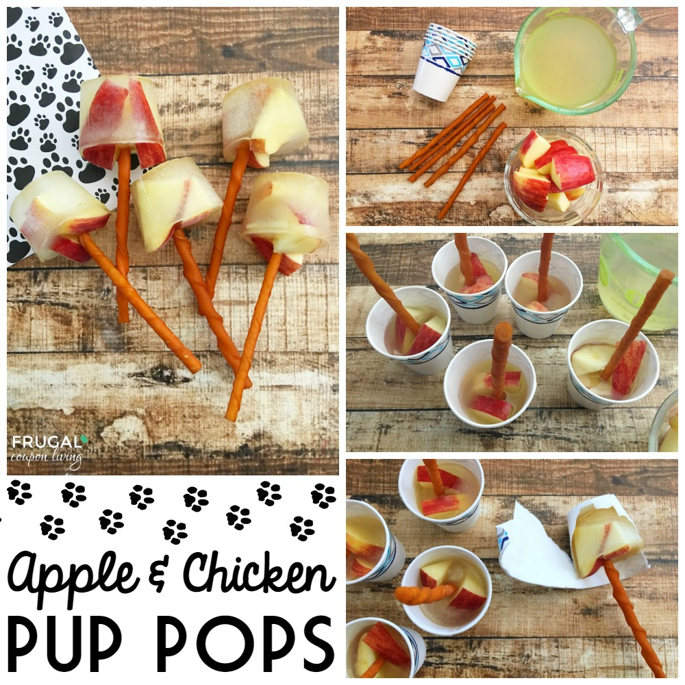 Apple & Chicken Pup Pops | Homemade Dog Treats For Man's Best Friend | Healthy Dog Treat Recipes