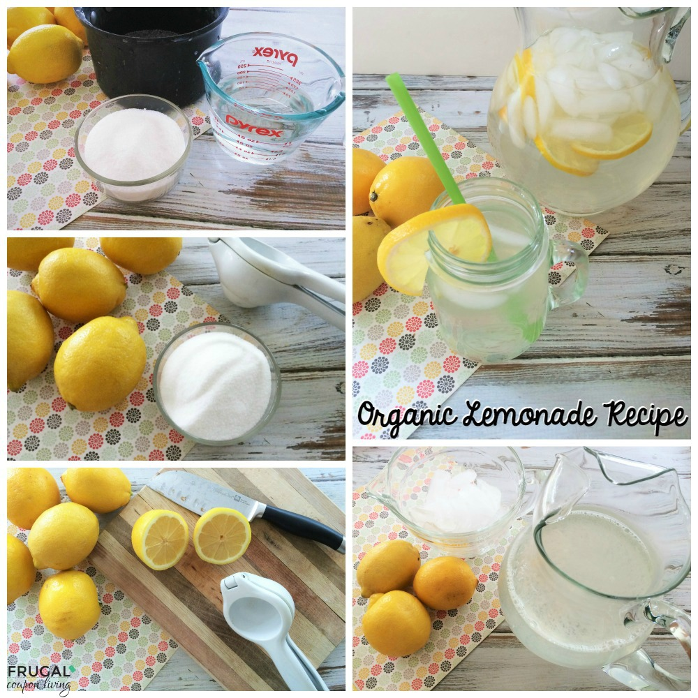 organic-lemonade-collage-fb-frugal-coupon-living