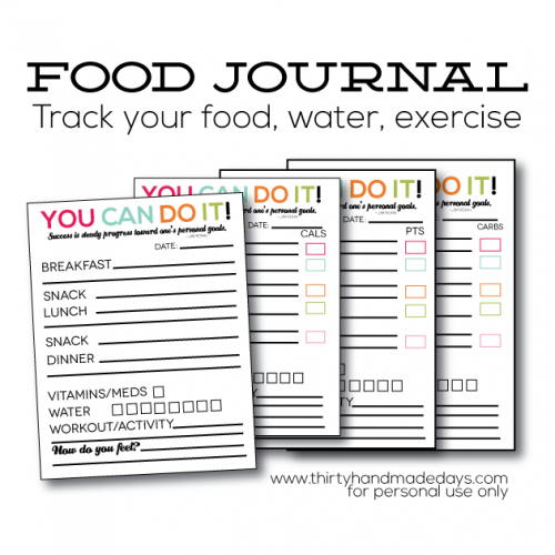 daily-food-journal