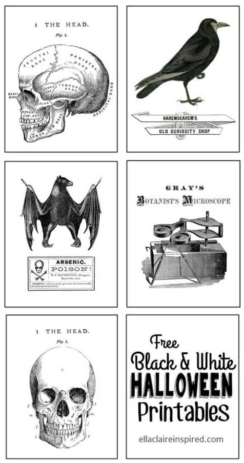 black white halloween printables - Haloween Printables