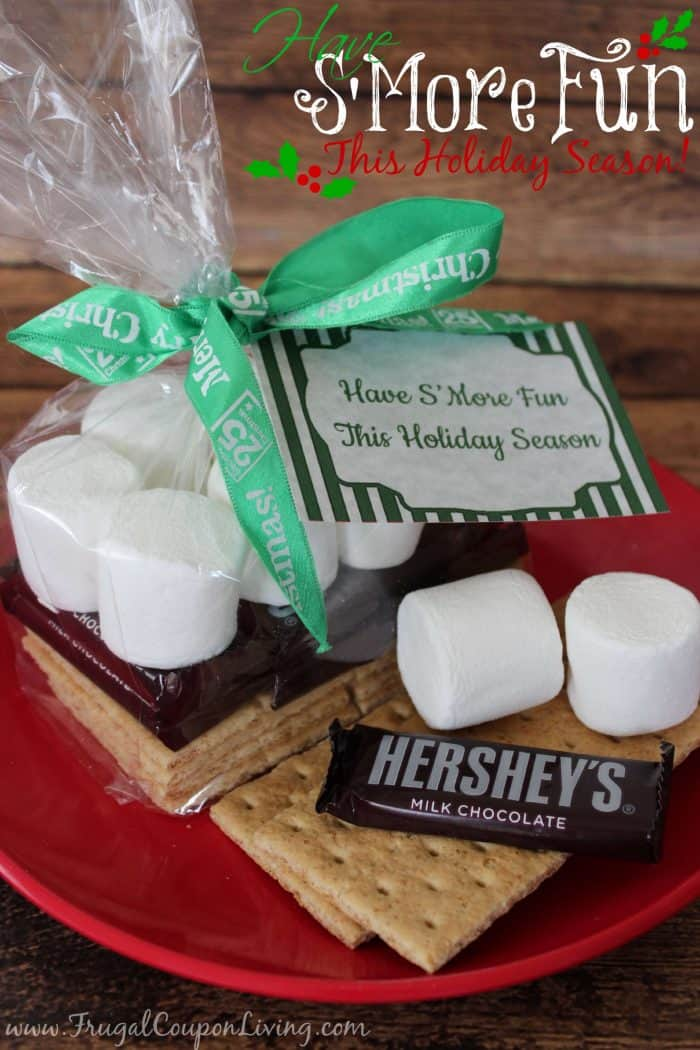 smores-fun-gift-frugal-coupon-living