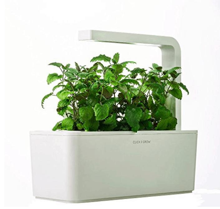 Click grow indoor smart fresh herb garden kit for for Indoor gardening reddit