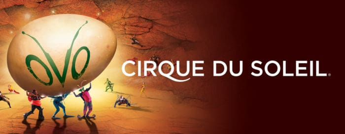 Cirque du soleil coupon code