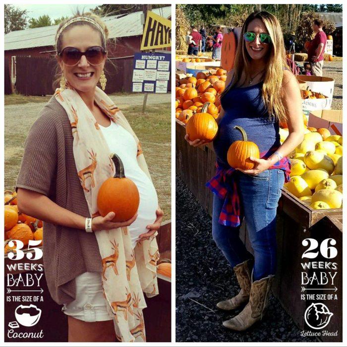 Cox Farm Fall Festival Free Pumpkin