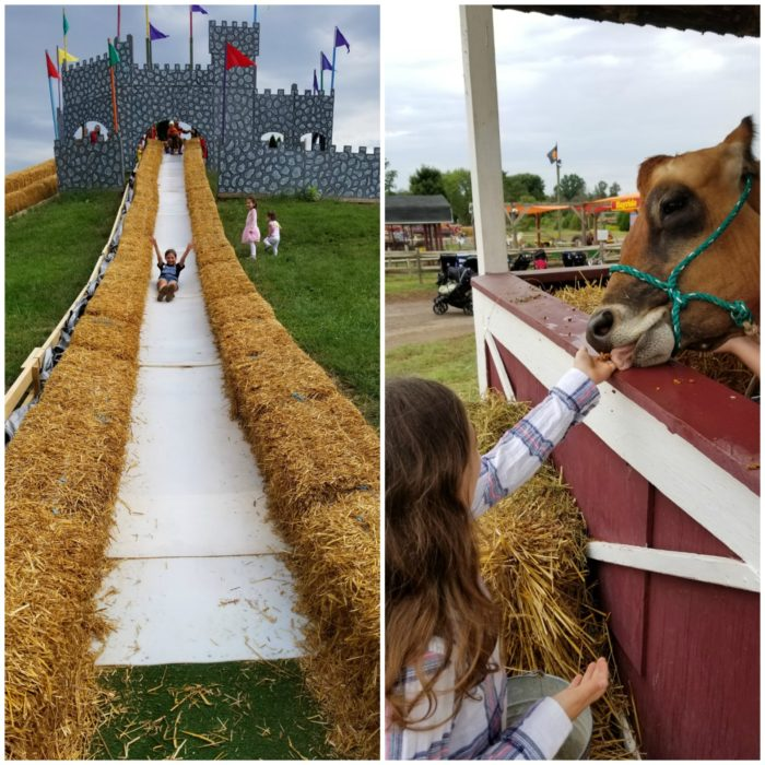 Northern Virginia Cox Farms Fall Festival
