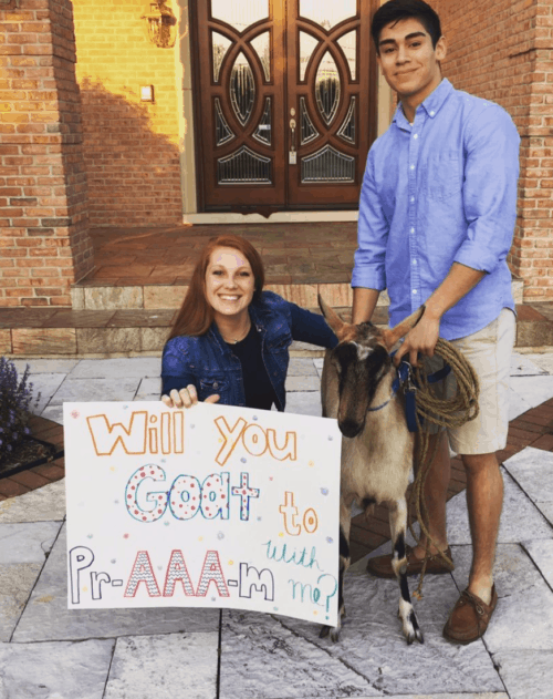 Best Will You Go To Prom With Me Promposals Ideas