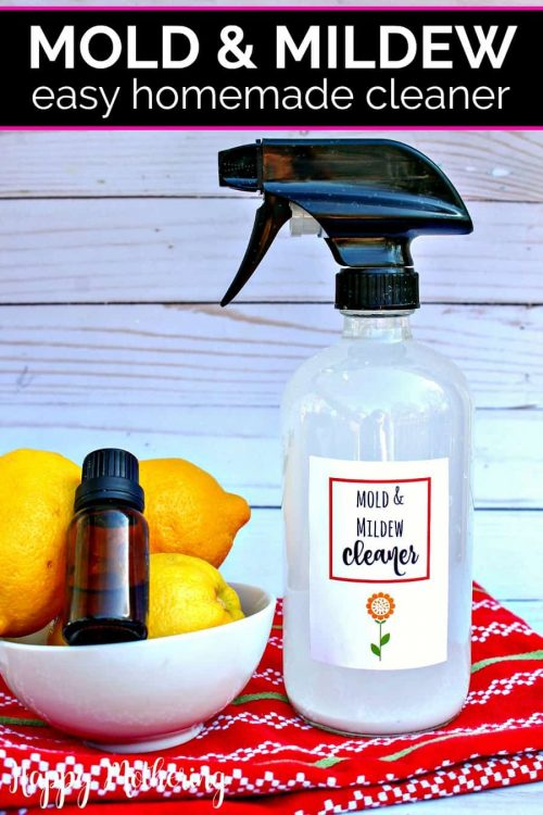 mold and mildew homeade cleaner