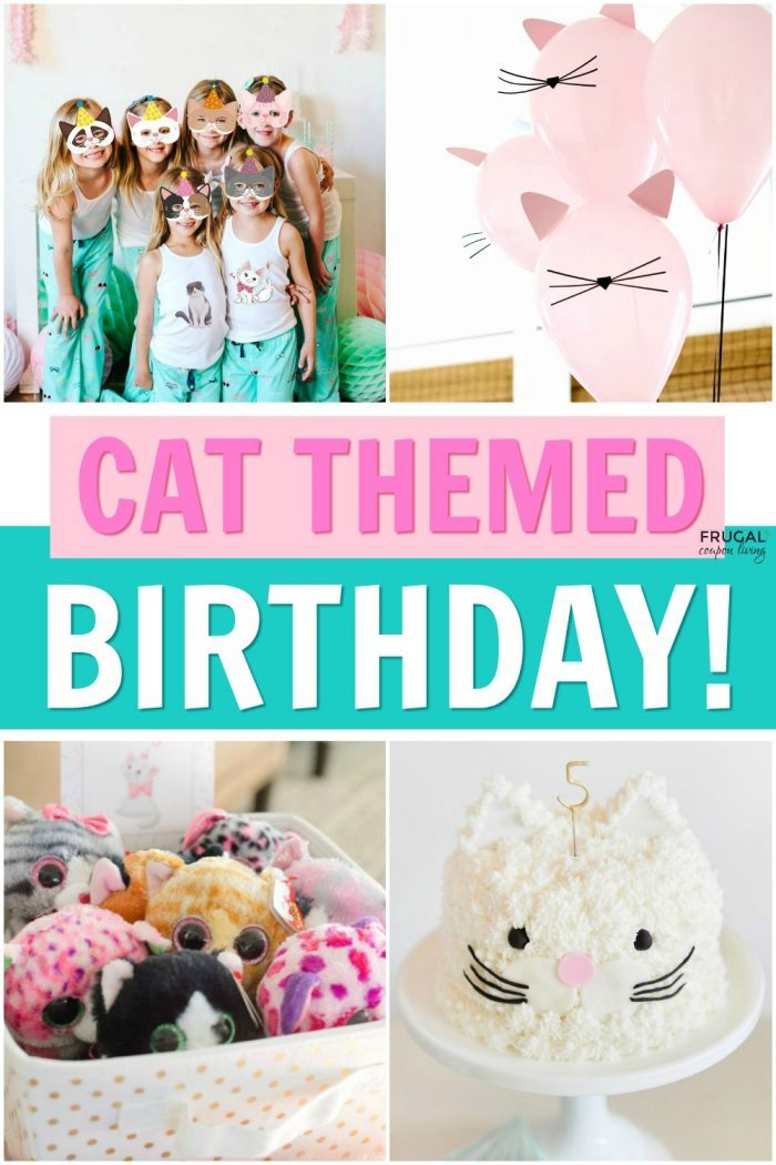 Cat Themed Birthday Parties for Kids