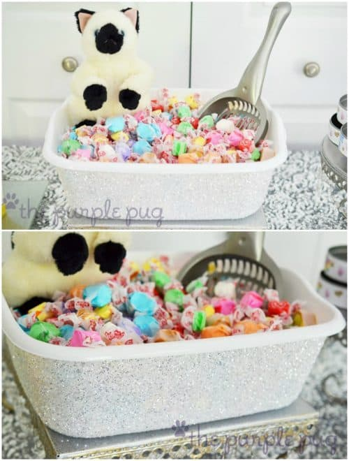 Cat Party Ideas   Kitty Litter Bucket with Candy
