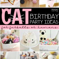 Cat Birthday Party Ides for Pets and Kids