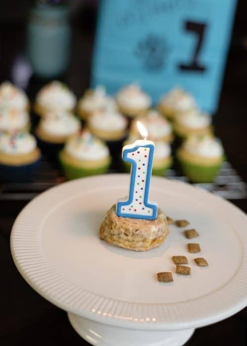 Cat Party Ideas   Cat Birthday Cake Recipe